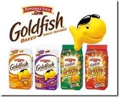 goldfish-01-300x243